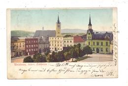 BÖHMEN & MÄHREN - WEIDENAU / VIDNAVA, Ortsansicht Mit Den Zwei Kirchen, 1900 - Boehmen Und Maehren