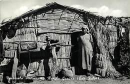 Pays Div -ref P418- Venezuela - Pintorcsca - Rancho Goajiro - Carte Bon Etat - - Venezuela