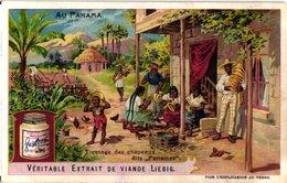0833 Liebig 6 Cards Au Panama-Chapeaux Panama-TRaveaux Du Canal-Chemin De Fer à Coton-Dance - Liebig