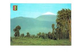 Cpm - Rwanda - LE VOLCAN - BLASON - 1984 - Rwanda