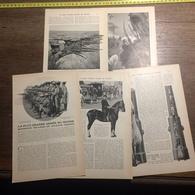 1909 DOCUMENT LA PLUS GRANDE ARMEE DU MONDE SOLDATS CHINOIS - Vieux Papiers