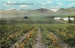 Pays Div -ref P381- Etats Unis D Amerique - United States Of America - Usa - Hawai - Pineapple Plantation -ananas - - Etats-Unis