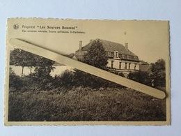 GENAPPE-BOUSVAL»PROPRIÉTÉ LES SOURCES BOUSVAL,Eau Minérale Naturelle,Source St- Barthélemy »panorama (1950)NELS - Genappe
