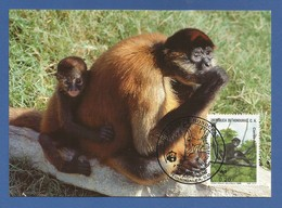 Republica De Honduras 1990 , Geoffroy`s Spider Monkey - WWF Official Maximum Card - First Day 18 April 1990 - Honduras