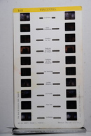 LESTRADE :     165    VINCENNES - Stereoscopes - Side-by-side Viewers