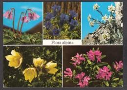 93113/ FLEURS, Fleurs Des Alpes - Fiori