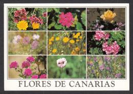 93118/ FLEURS, Fleurs Des Canaries - Fiori