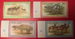 MALAWI - MNH** - 1981 - # 378/381 - Malawi (1964-...)