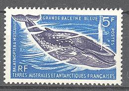 Terres Australes Et Antarctiques Françaises (TAAF) : Yvert N° 22**; MNH - Französische Süd- Und Antarktisgebiete (TAAF)