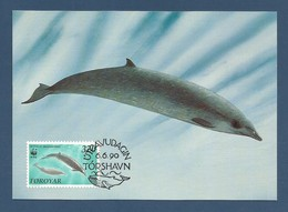 Färöer Inseln 1990  Mi.Nr. 203 , Zweizahnwal / Sowerby`s Beaked Whale - WWF Official Maximum Card - Torshavn 6.6.1990 - Faroe Islands