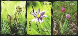Kosovo 2017. Flora. Aster Albanicus, Tulipa Luanica, Solenantë Krasniqi. Set MNH - Kosovo
