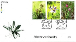 Kosovo 2017. Flora. Aster Albanicus, Tulipa Luanica, Solenantë Krasniqi. FDC MNH - Kosovo