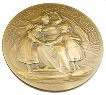Alsace-Lorraine - France - Sous Le Même Drapeau - Bronze - 1918 - 60mm - 97 Gr. - TTB - - Professionnels / De Société