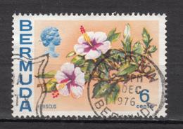 ##22, Bermudes, Bermuda, Fleur, Flower, Hibiscus, Élizabeth II - Bermudes
