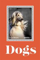 Uganda 2013 Dog Chien MNH 2SS+2 Sheet - Uganda (1962-...)