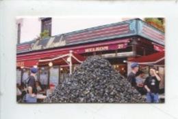 """Lille : Café Brasserie Restaurant """"Aux Moules"""" Rue De Béthune (carte Visite Double) - Lille"""