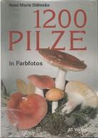 Livre Mycologie / 1200 Photos Champignons / 1200 Pilze / Rose Marie Dänncke - Libros, Revistas, Cómics