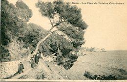 83 - TOULON - CAP-BRUN - Les Pins Du Peintre Courdouan - Toulon