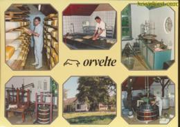 Orvelte [AA32-3.228 - Pays-Bas