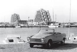CARTE POSTALE PEUGEOT 204 CABRIOLET Modèle 1969 -  10X15 CM - PKW