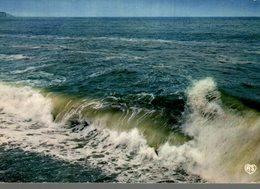 LA TERRE NE SAIT PAS LA LOI QUI LA FECONDE  L'OCEAN... LAMARTINE - Philosophie & Pensées
