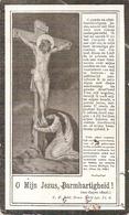 DP. ROSALIE DE ZUTTER ° ADEGEM 1838 - + BALGERHOEKE 1923 - Religion & Esotérisme