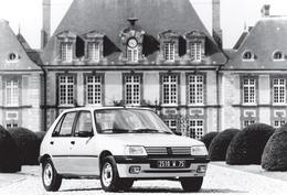 CARTE POSTALE PEUGEOT 205 Devant Château -  10X15 CM - PKW