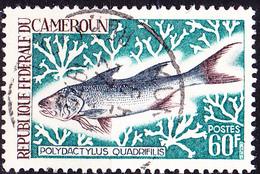 Karemun - Bastard-Meeräsche (Polydactylus Quadrifilis) (Mi.Nr.: 550) 1968 - Gest Used Obl - Cameroun (1960-...)
