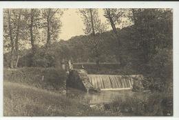 Cerfontaine Cascade De Falemprise (10338) - Philippeville