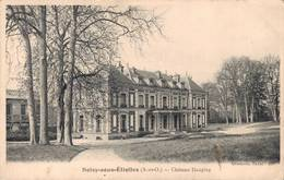 91  SOISY SOUS ETIOLLES  Château Des Daupley - France