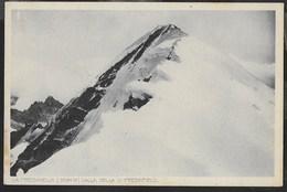 LA PRESANELLA - FORMATO PICCOLO - EDIZ UNTERVEGER TRENTO - PRIMO NOVECENTO - NUOVA - Alpinisme