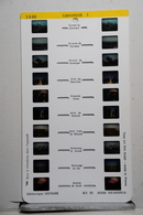 LESTRADE :     1440   CAMARGUE  1 - Visionneuses Stéréoscopiques