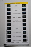 LESTRADE :     1440  B    PROVENCE  : CAMARGUE   2 - Visionneuses Stéréoscopiques