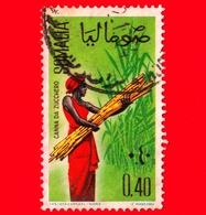 SOMALIA - Usato - 1961 - Ragazze Per La Raccolta - Canna Da Zucchero - 0.10 - Somalië (1960-...)