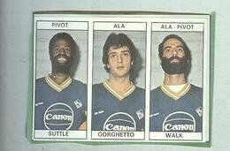 SUTTLE,GORGHETTO,WALK..CANON....PALLACANESTRO....VOLLEY BALL...BASKET EDIS - Trading Cards