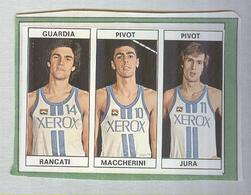 RANCATI,MACCHERINI,JURA...TEAM XEROX...PALLACANESTRO....VOLLEY BALL...BASKET EDIS - Trading Cards
