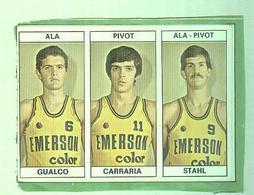 GUALCO,CARRARIA,STAHL.....TEAM  EMERSON...PALLACANESTRO....VOLLEY BALL...BASKET EDIS - Trading Cards