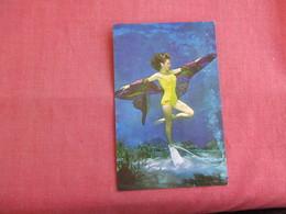 Weeki Wachee Spring Underwater Show Florida  -ref 3127 - Pin-Ups