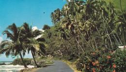 OCEANIE. TAHITI. MACHINE. EAST COAST ROAD. PHOTO SOUNAM. ANNEE 1971. - Tahiti