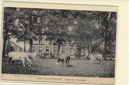KALMTHOUT:  HOTEL DES CHASSEURS-HOELEN - Kalmthout