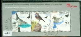 NEDERLAND * NVPH 1623  In Blok Block *  POSTFRIS GESTEMPELD * BIRDS * OISEAUX - Periode 2013-... (Willem-Alexander)