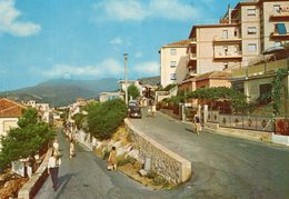 FIAT In Belvedere Rivera - Voitures De Tourisme
