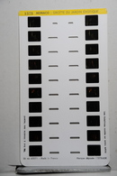 LESTRADE :     1573     MONACO  :  GROTTE DU JARDIN EXOTIQUE - Visionneuses Stéréoscopiques