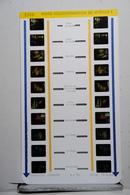 LESTRADE :     1584    MUSEE OCEANOGRAPHIQUE DE MONACO  1 - Visionneuses Stéréoscopiques
