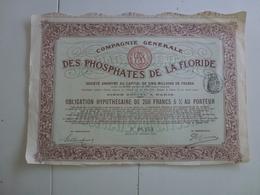 Action  Compagnie Générale Des Phosphates De La Floride - Agriculture