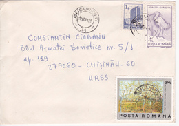 1981 , Roumanie To Moldova , Birds , Painting  , Used Cover - 1948-.... Republics