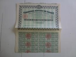 Action  Compagnie Agricole De Guinée - Agriculture