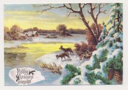 AK04 Christmas Greeting - Snow, Deer - Christmas