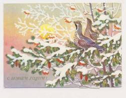 AK04 Christmas Greeting - Partridges In Pine Tree - Christmas