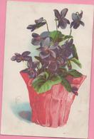 CPA Fleurs Violettes Boite Rurale (OR) - Fleurs